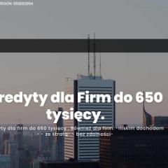 MS Premium – Kredyty dla Firm do 650 tysięcy